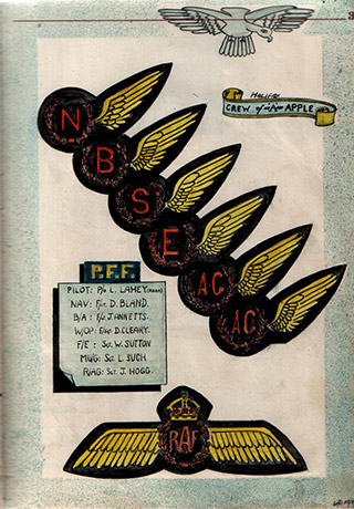 Page 9, Air crew badges